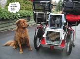 Cargo platform for carrying all sorts of things, perhaps even your pet